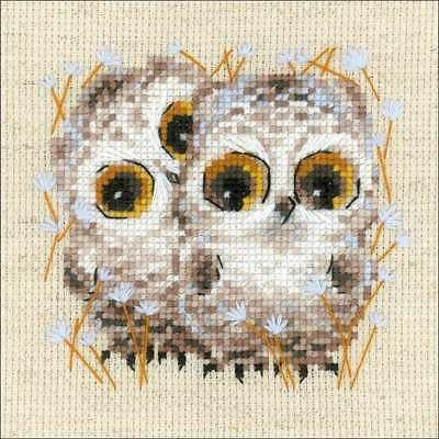 counted cross stitch kit 5 x5 little